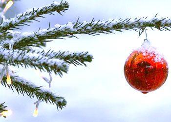 Histoire : Conte de Noël